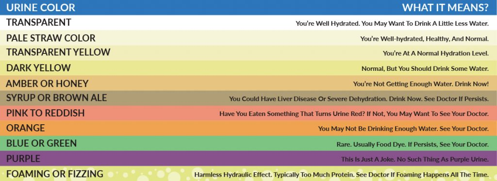 urine chart, what color of urine means, what does the color of urine mean, color of urine, urine color, pee color,